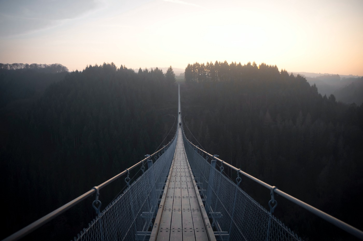 A narrow bridge, viewed from one end, over a thick forest.