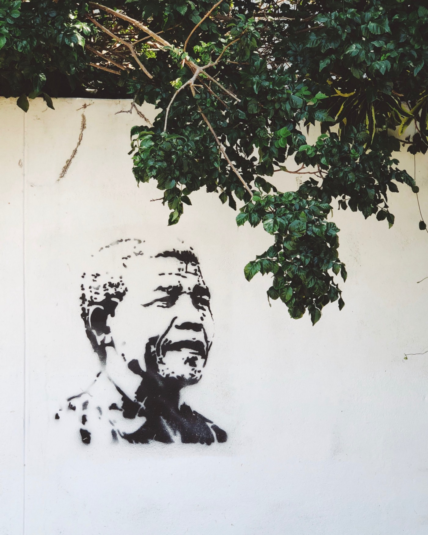A graffiti portrait of Nelson Mandela