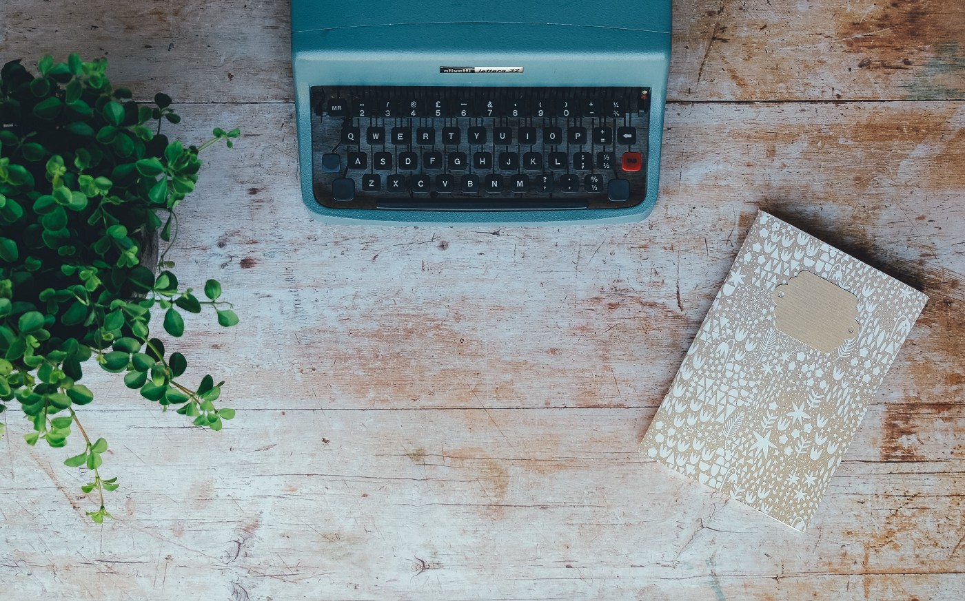 Plant, typewriter, and journal on wooden table.