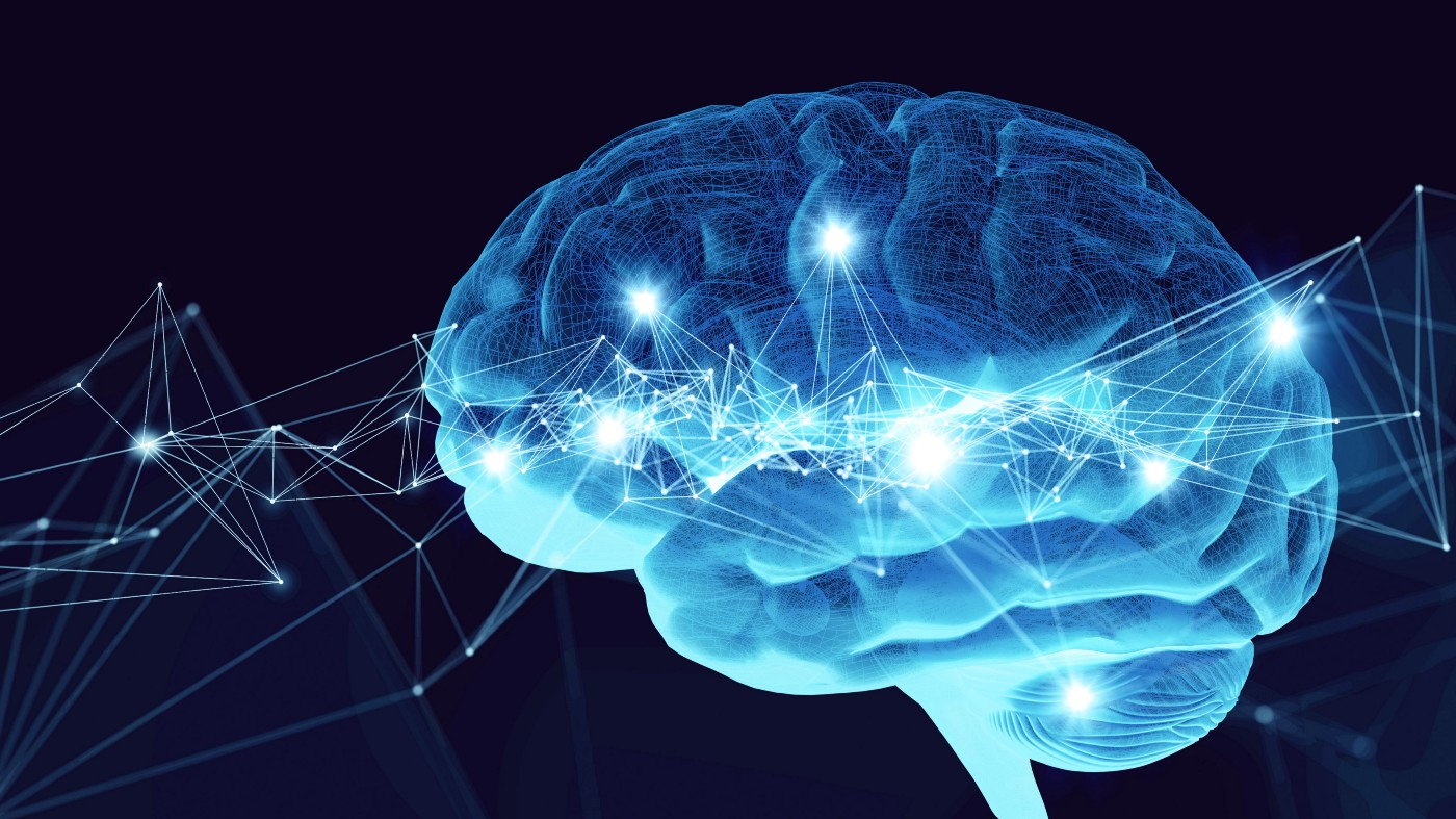 Illustration of the brain and neural networks.