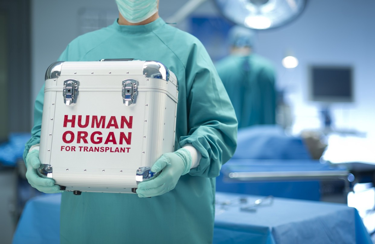 A box with human organs in it