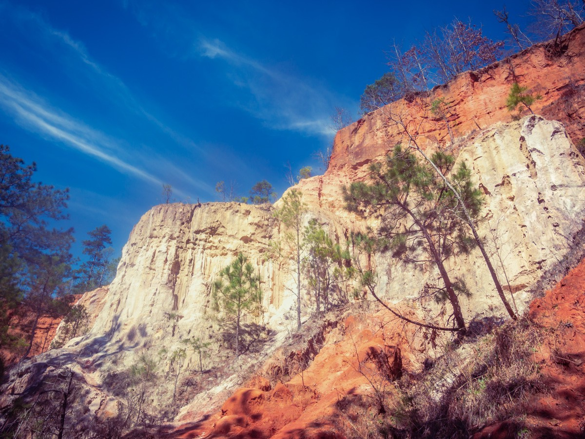 Looking up at the steep, multi-hued cliffs of erosion at Providence Canyon State Park in Georgia with a deep blue sky above