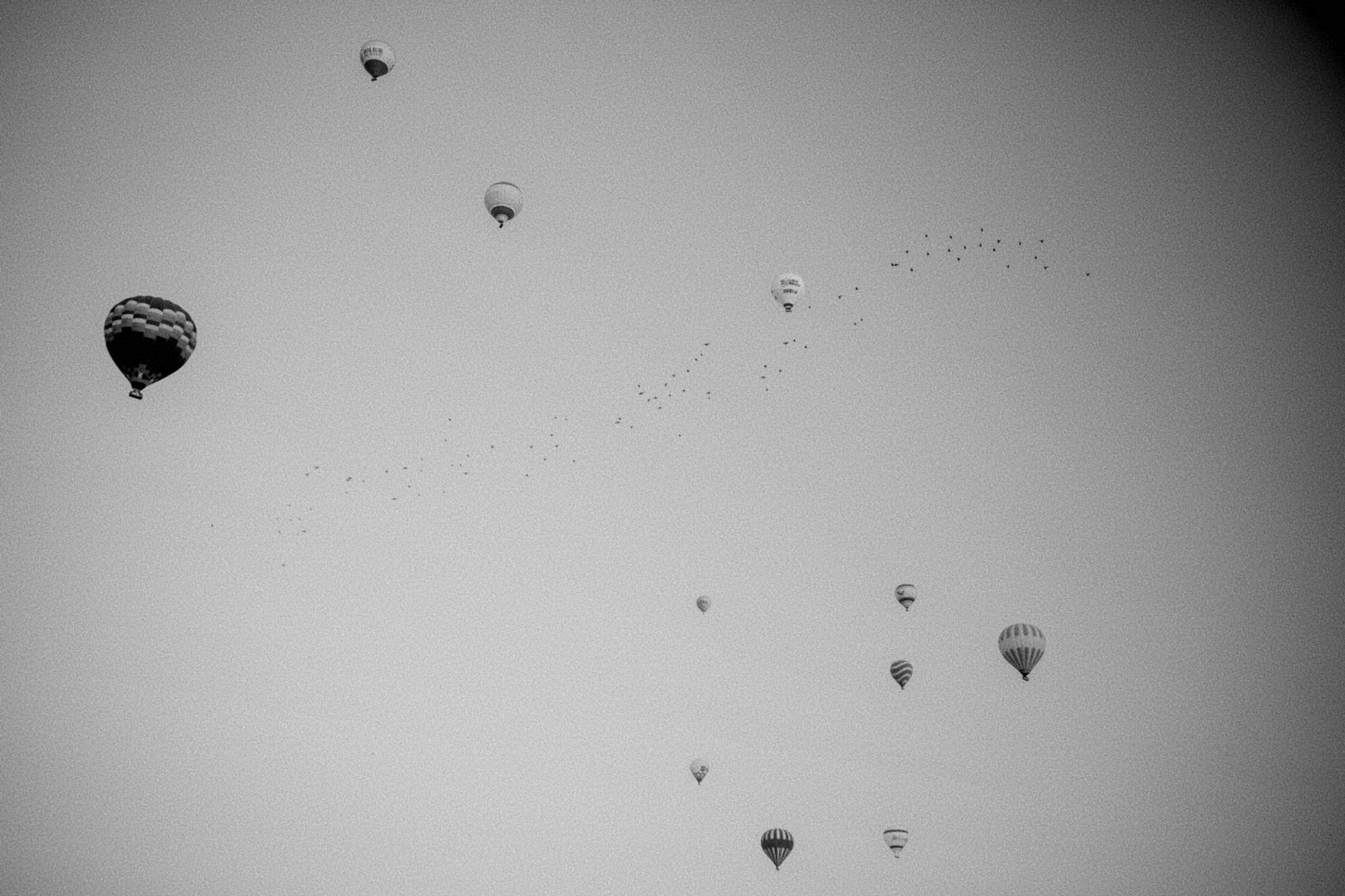Balloons soaring through the sky after much preparation.