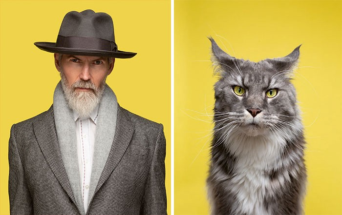 A serious looking man in a fedora and suit, to his right, a serious looking cat with gray markings and sharp ears