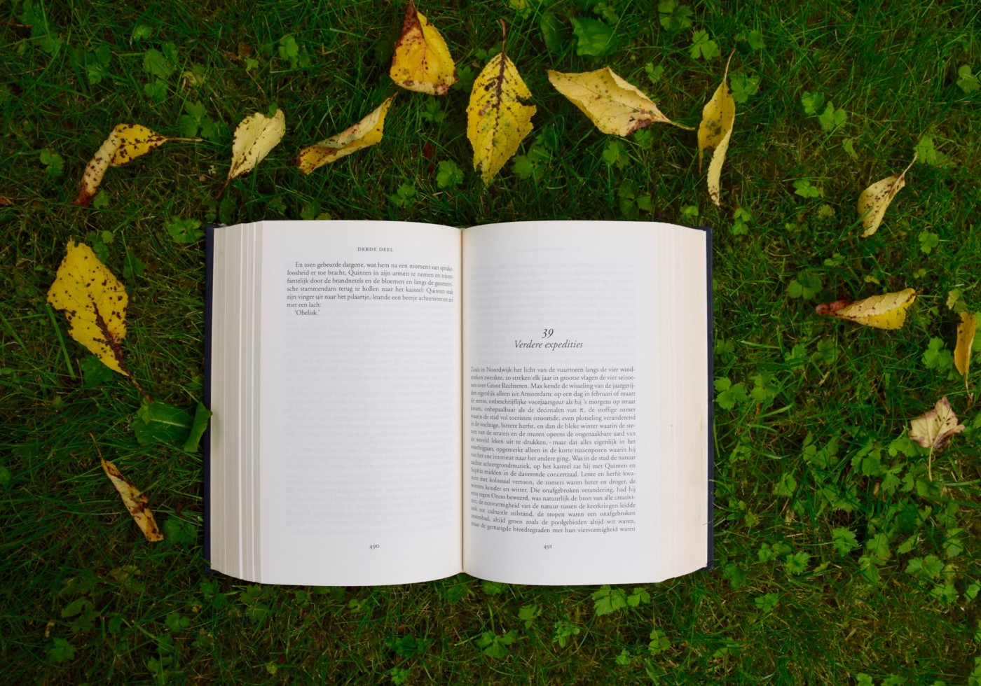 Open book on green background framed by yellow leaves.