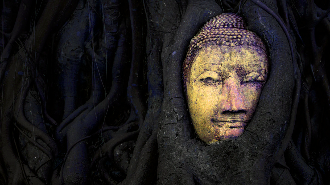 Image of a statue embedded in tree roots. From Unsplash.com