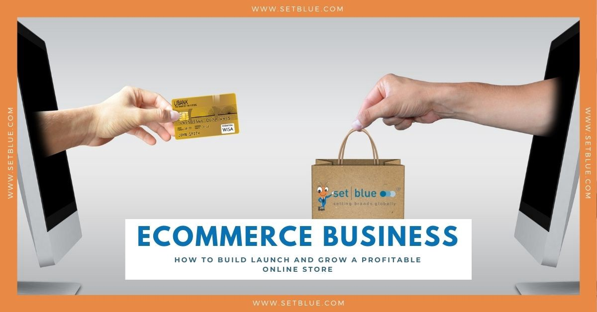 How to Build, Launch and Grow a Profitable eCommerce Online Store