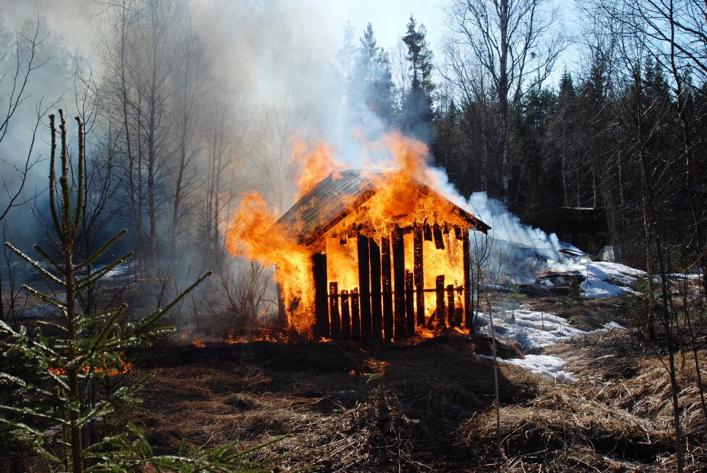 Burning hut in the forest.