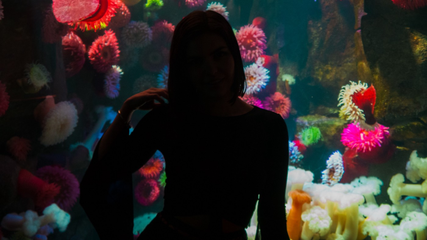 A woman in silhouette against a tank of colorful sponges, Ripley's Aquarium of Canada, Toronto.