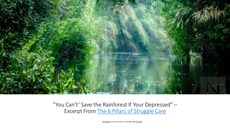 """You Can't' Save the Rainforest If Your Depressed""""—Excerpt From The 6 Pillars of Struggle Care"""