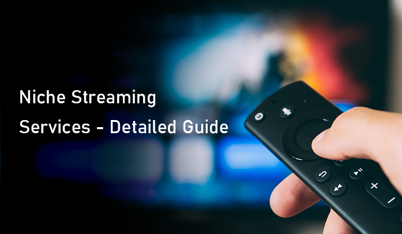Niche Streaming Services