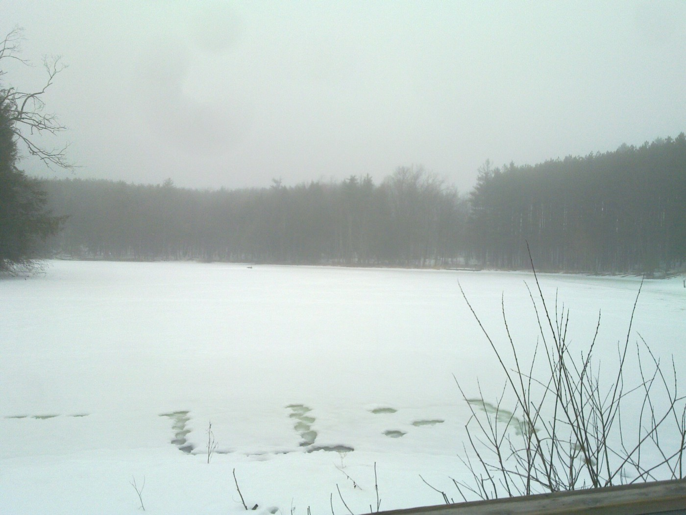 Frozen lake with mist and trees in background.