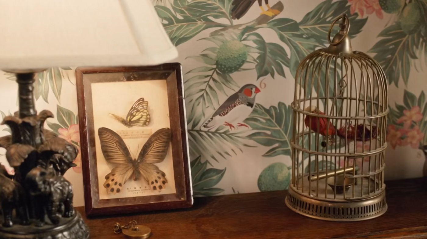 A lamp, some pinned butterflies, and a birdcage. On the wallpaper, a red-beaked finch next to a letter 6