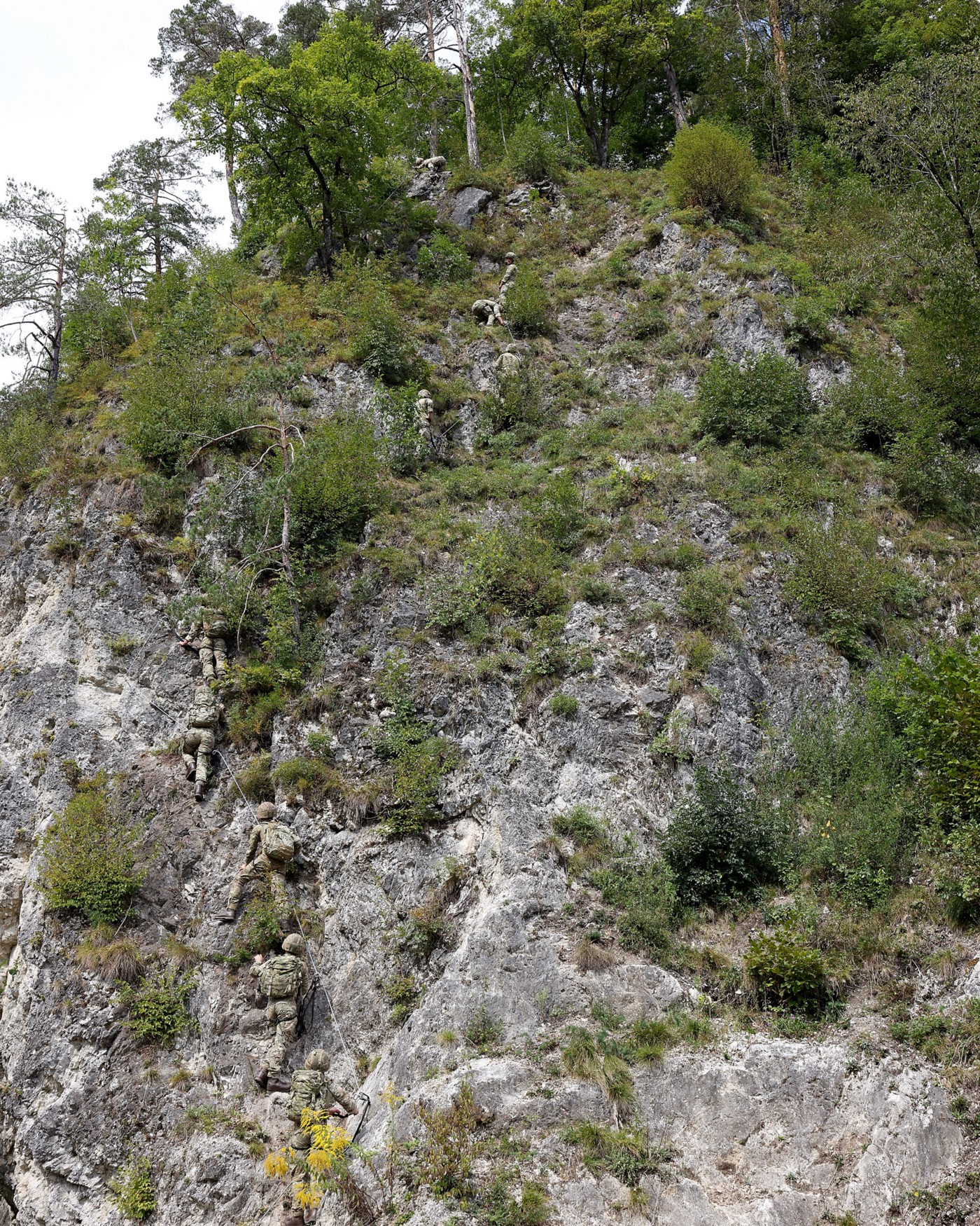 45 Commando carrying out fixed line climbing in Slovenian mountains