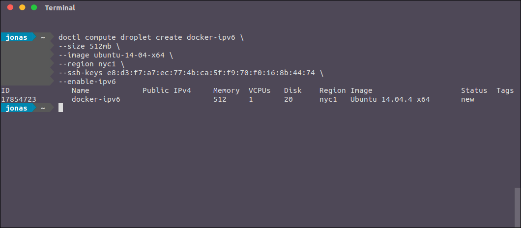 Public IPv6 addresses for your Docker containers on Digitalocean
