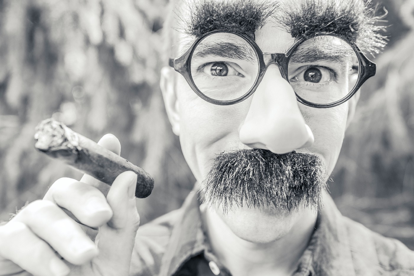man wearing a fake Groucho Marx eyebrows and moustache and holding a cigar