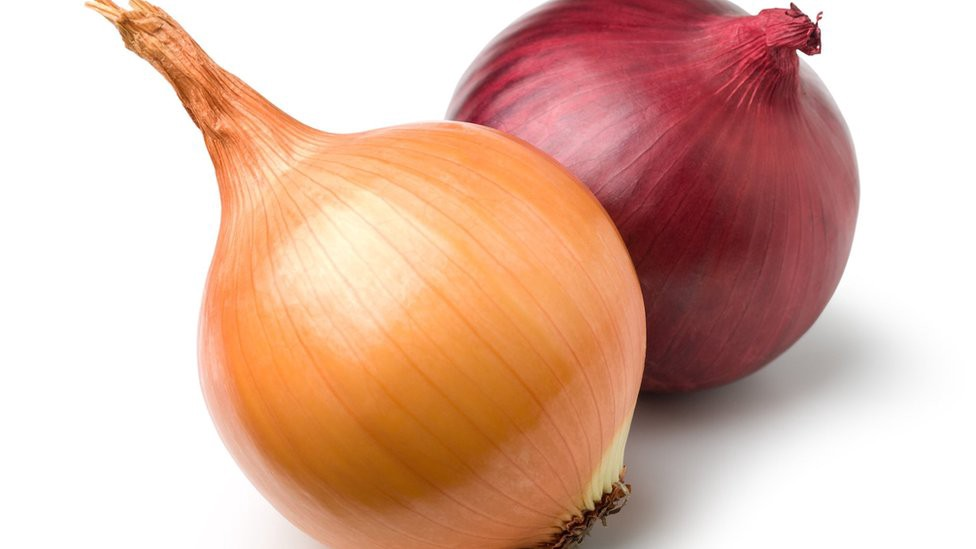 A pair of onions sitting together.
