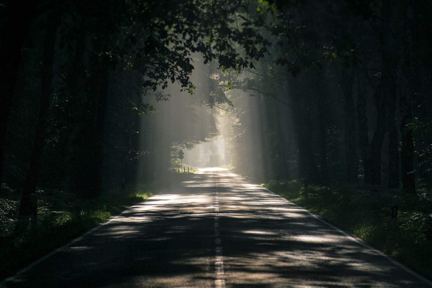 A mysterious road ahead