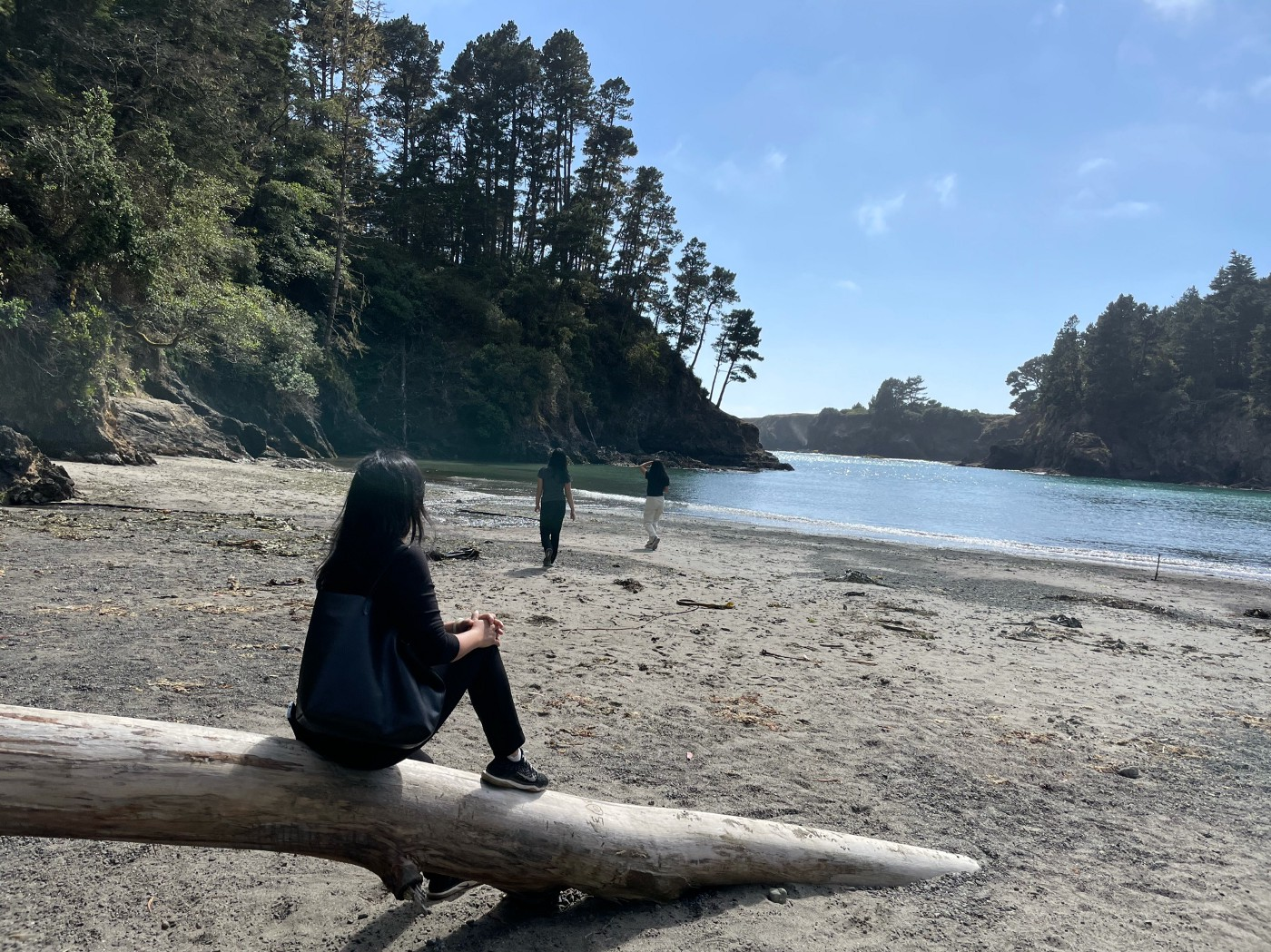 Woman sits on log with her back to the camera as two teen girls walk toward the water's edge.