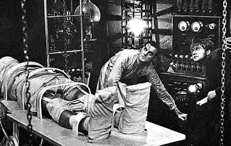 Image of Mary Shelly's Frankenstein—The Strange History of Making People