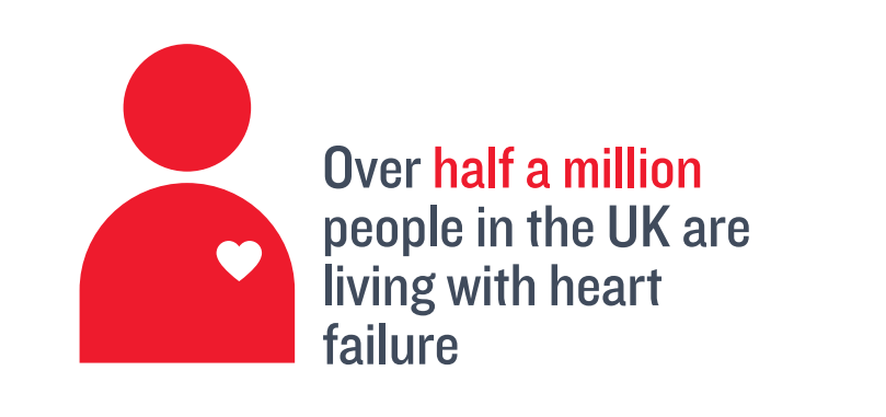 When does our heart first start to beat? - British Heart Foundation