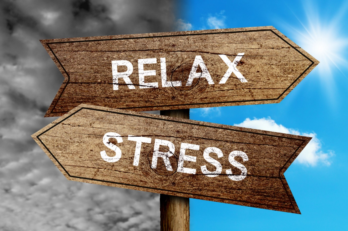 """Road signs. The sign in one direction says """"RELAX,"""" while the sign in the other dirction says """"STRESS."""""""