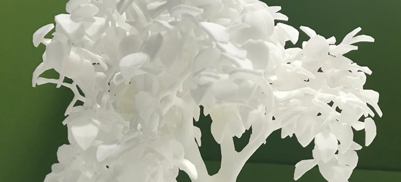 Close up of a white 3D printed tree against a green background