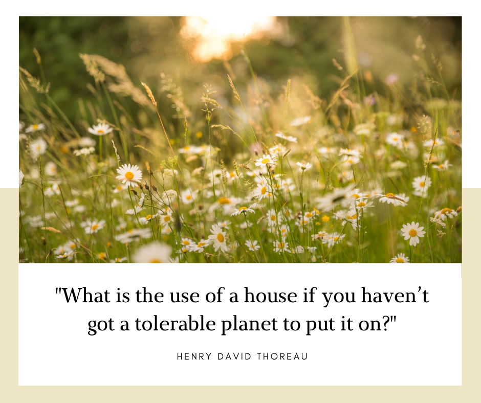 A scenery with Henry Thoreau quote which reads What is the use of a house if you haven't got a tolerable planet to put it on?