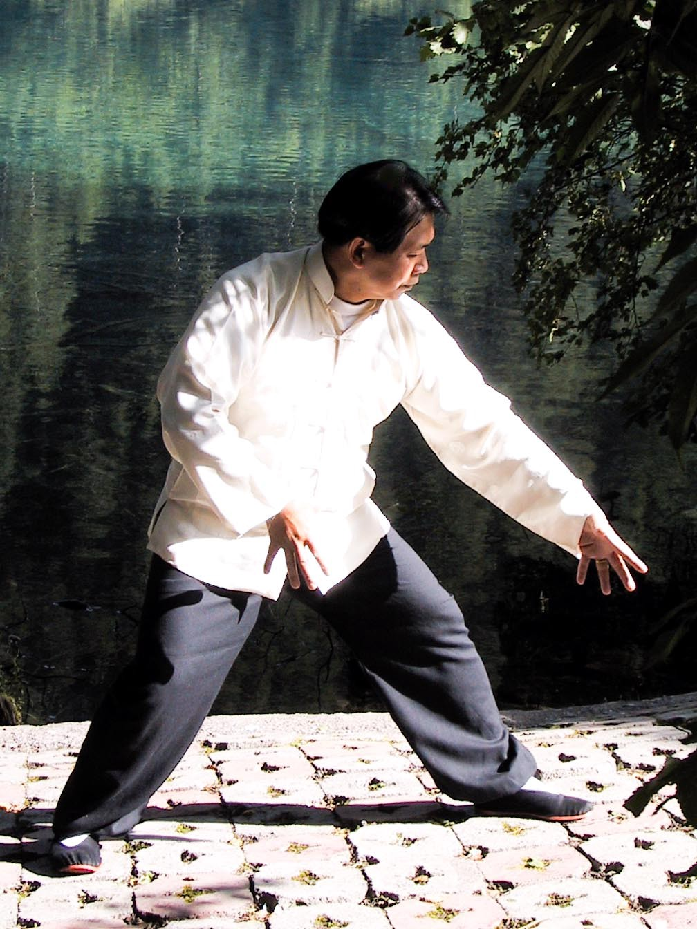 Master Lam Standing in 'Holding the Tiger' Position