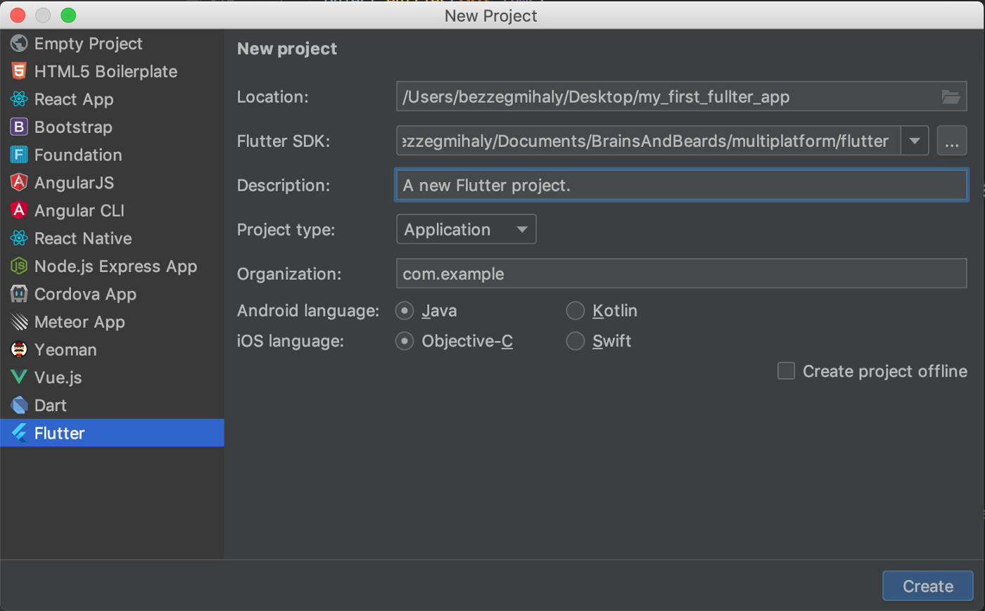 Creating your first Flutter project using WebStorm - Brains & Beards