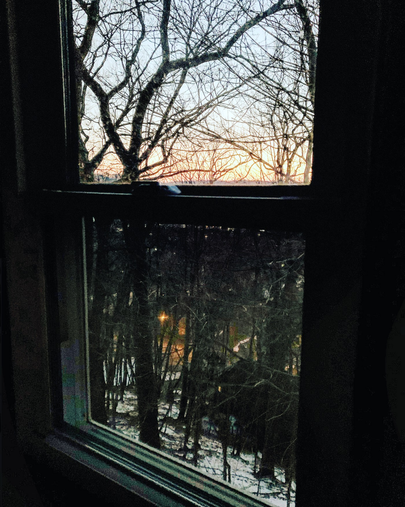 The reader is looking out the window at an ominous sunset in the dusk covered woods