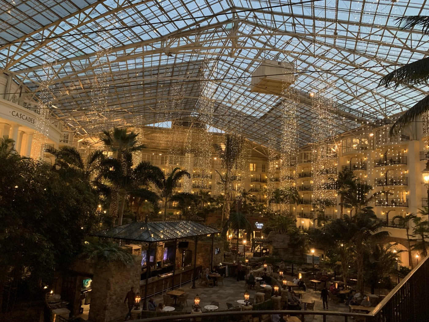 An indoor patio surrounded by lush vegetation within the center of a resort, surrounded by hotel rooms towering above the ground. Glass ceiling and fairylights hanging from above.