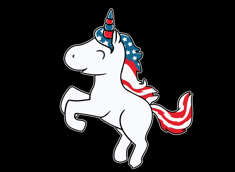 I'm an undecided unicorn voter in US Election 2020. Independents could be the new progressives needed to bridge the divide.