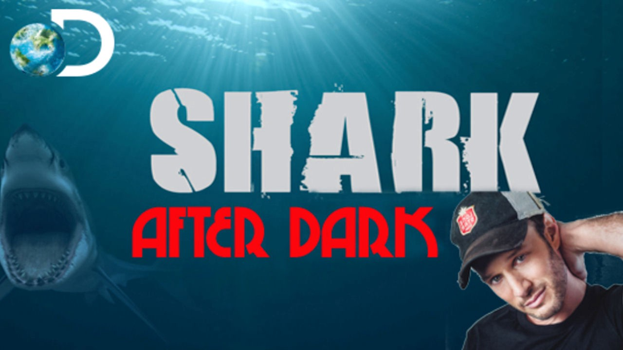Shark After Dark Season 7 Episode 3 | S7xE3 [Discovery] Full Episodes