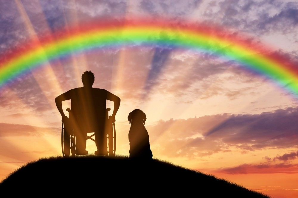 A silhouette of a person in a wheelchair beside what is presumably a service dog. The background is a rainbow over a sunset.