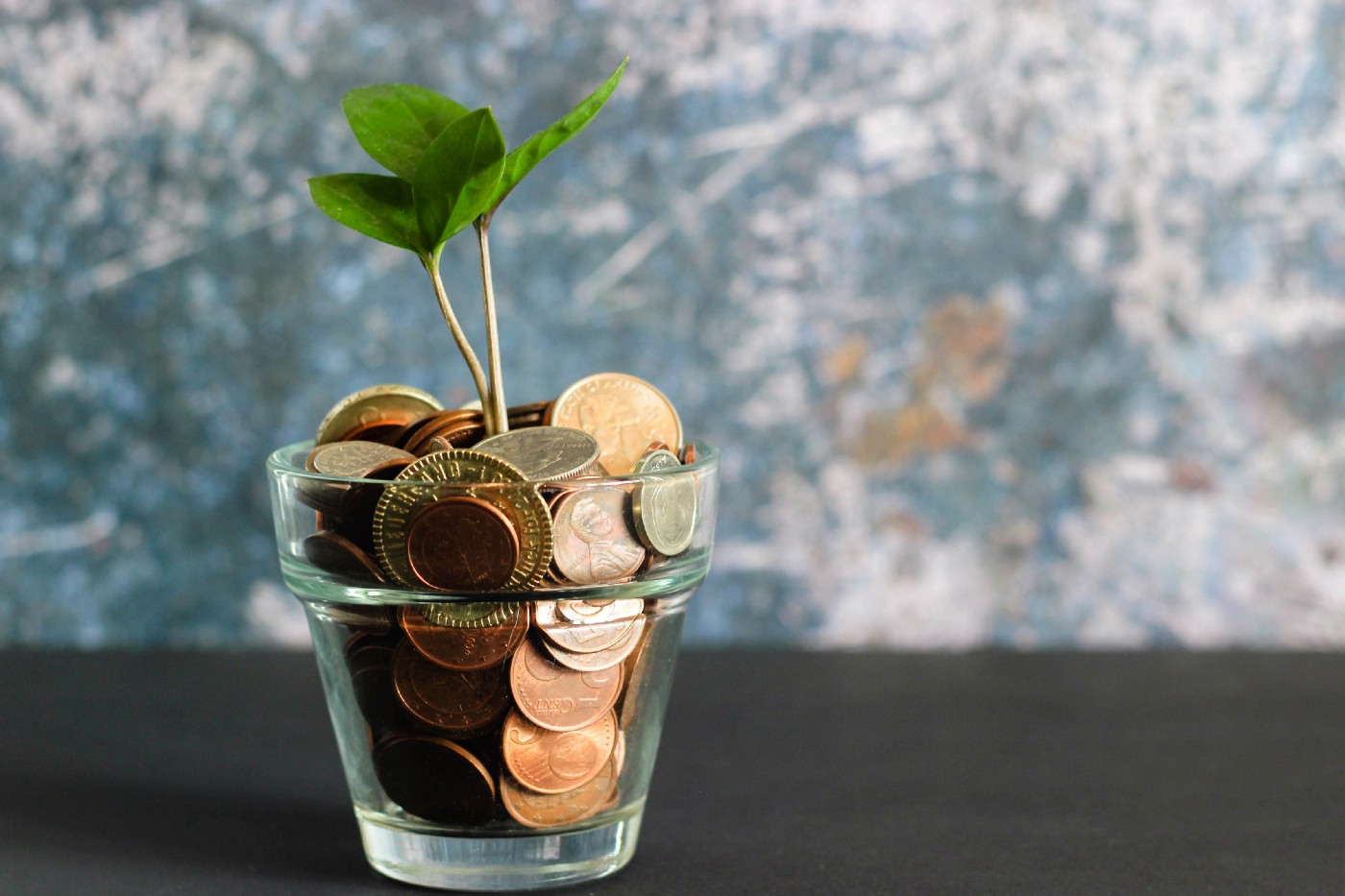 A seedling seemingly growing out of a small glass filled with coins of different currencies.