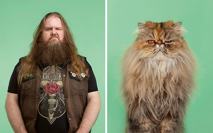 A tough-looking biker with a long beard on the left, a cat with long hair and a somewhat ornery expression on the right