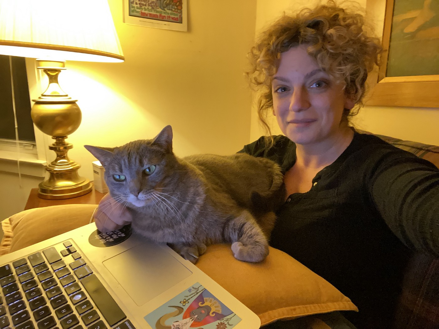 The author and her large grey cat, who has green eyes, sitting on a couch with a laptop, which the cat surely does not wish for her to access
