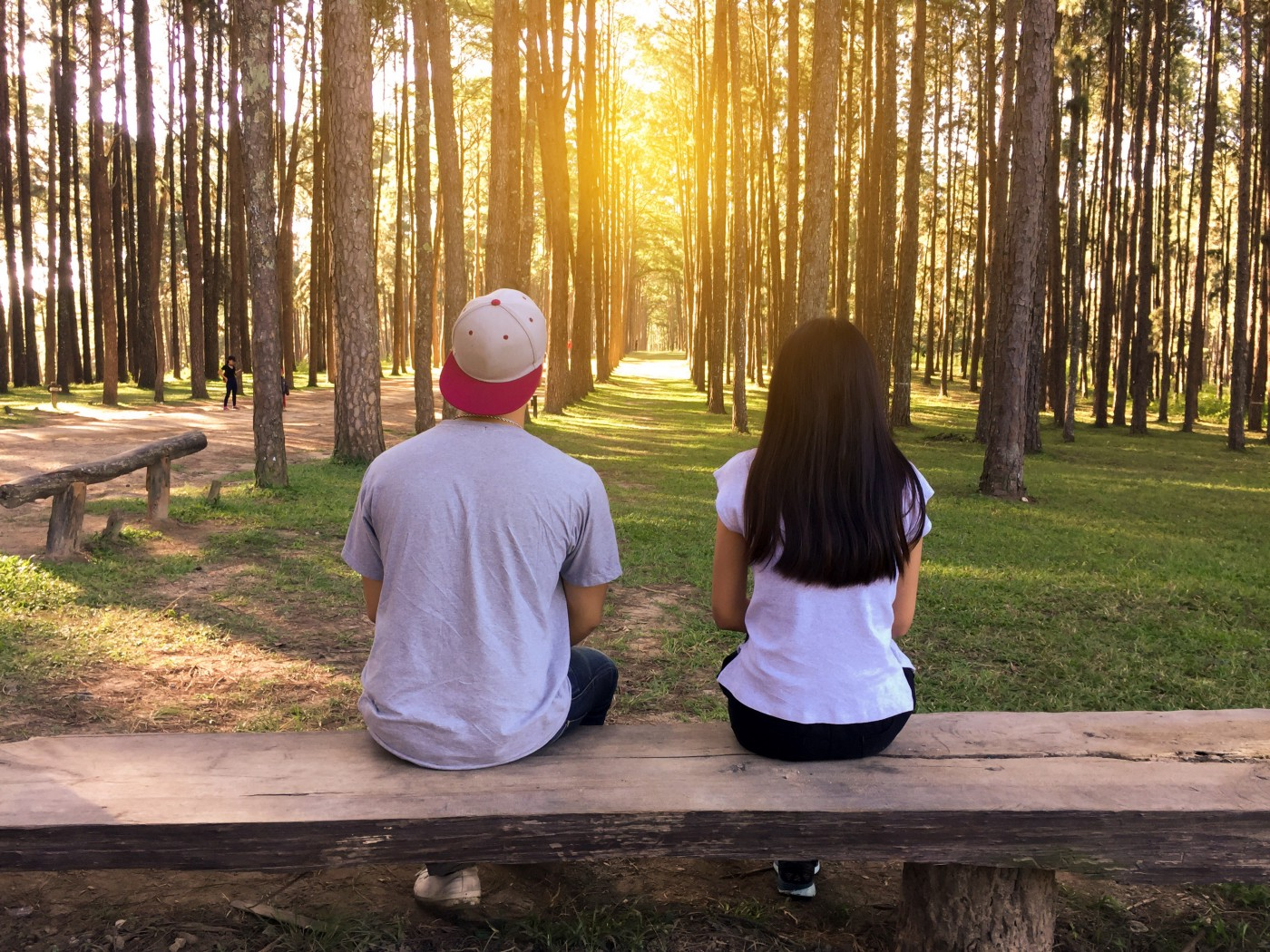 Two teens sit on wooden bench side-by-side with backs to camera looking at a field of trees and sun shining through.