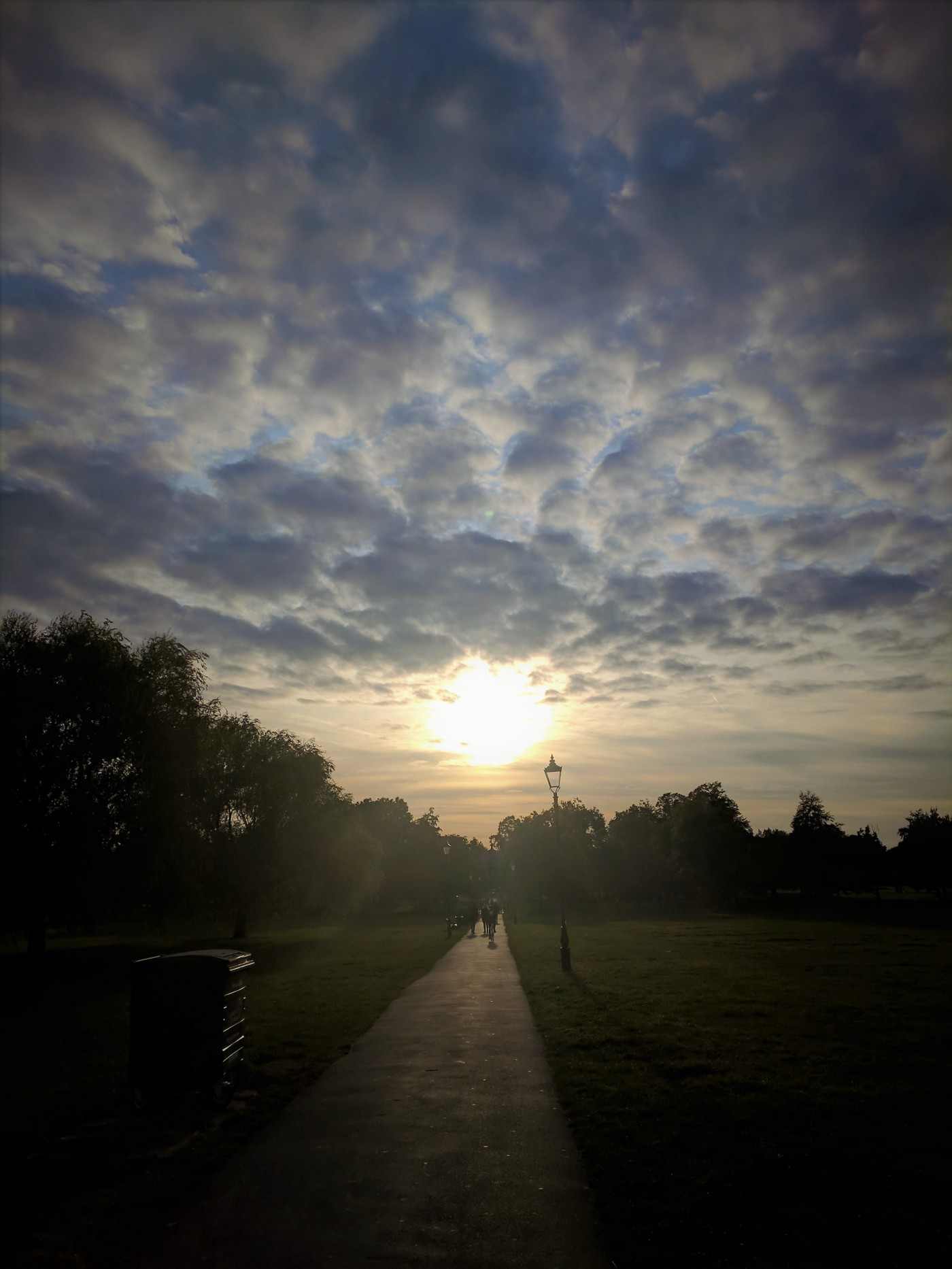 Park with sunset and grey fluffy clouds fading into distance