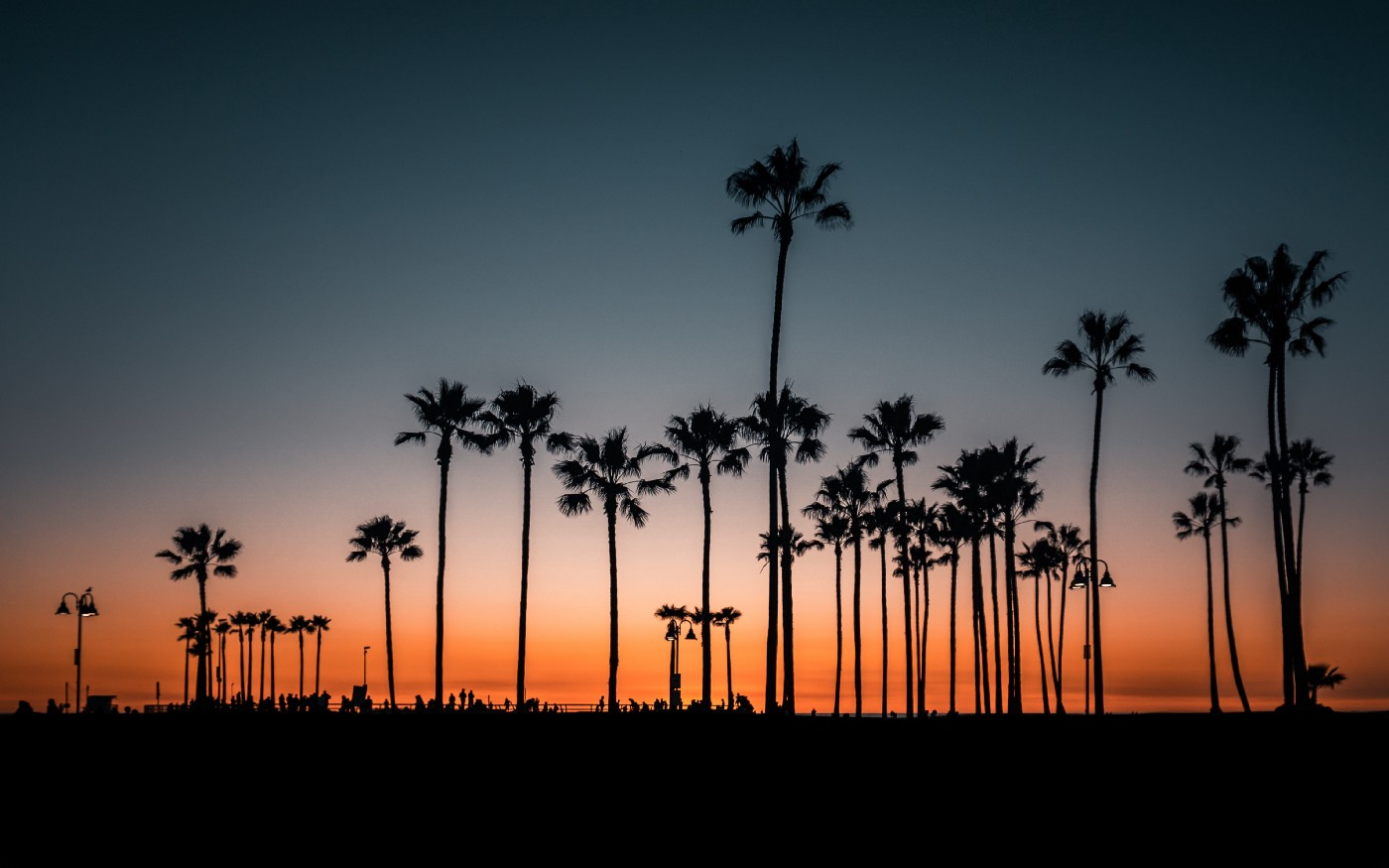 California sunset with palm trees. The colors in the sunset are orange blue and pink. The palm trees line the skyline.