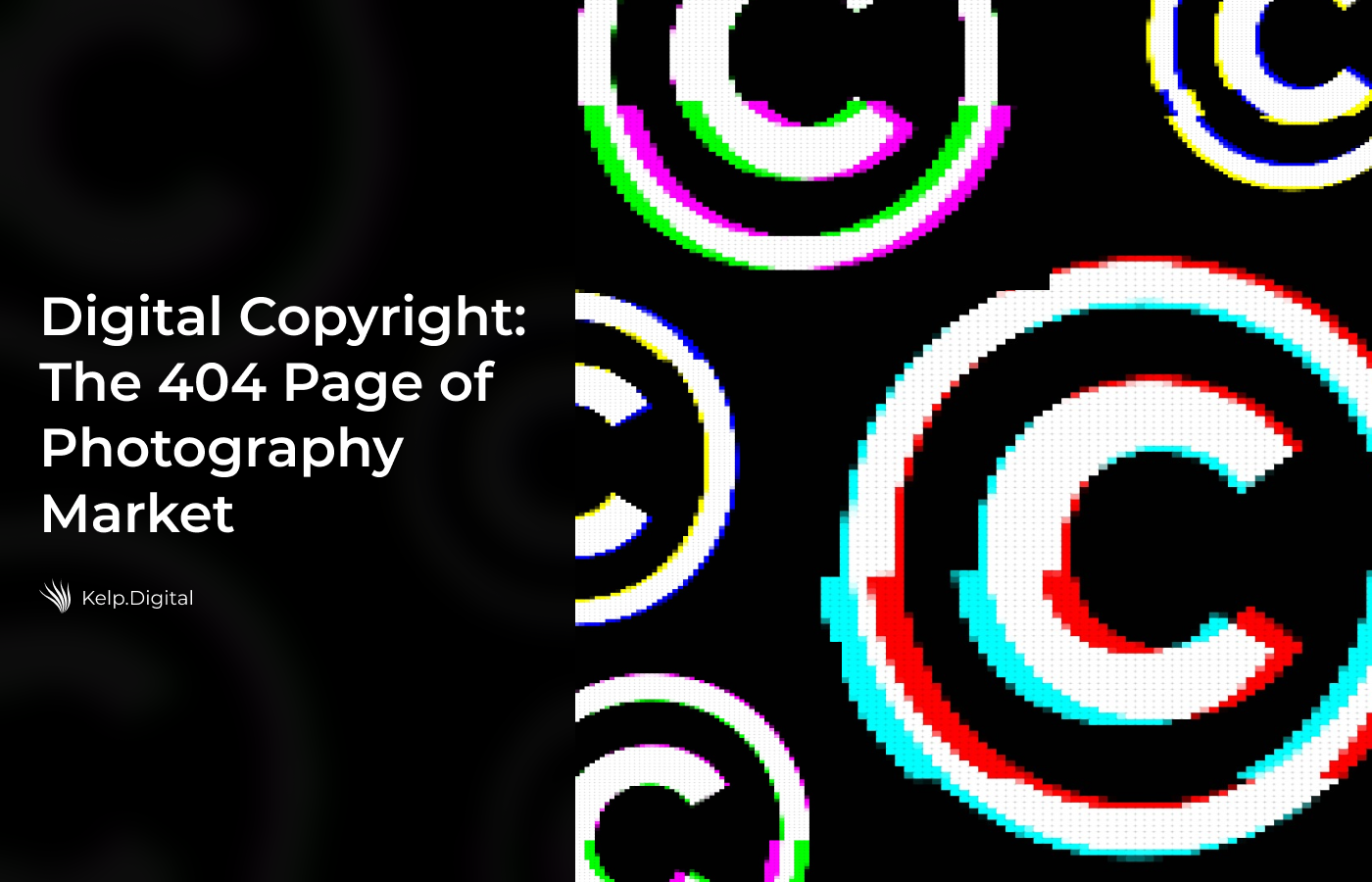 Digital Copyright: The 404 Page of Photography Market