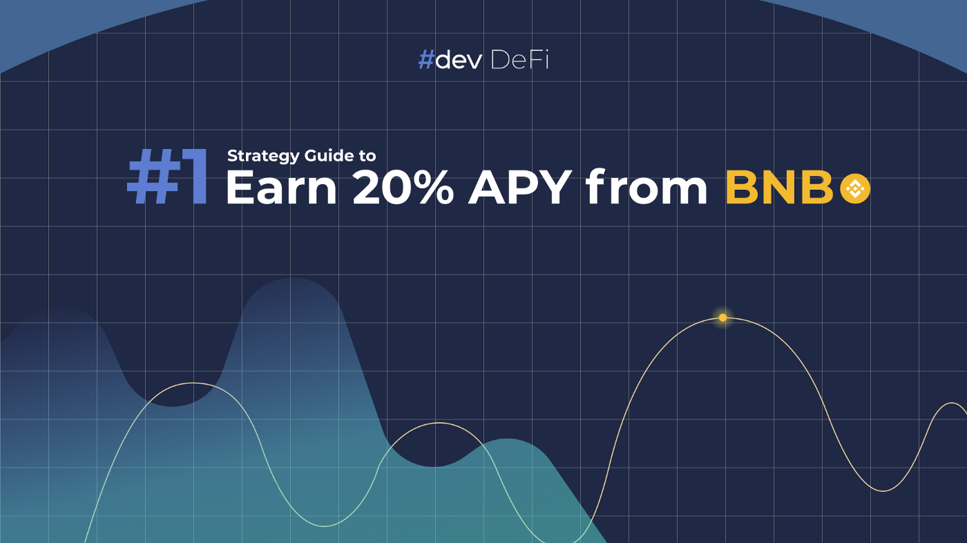 Strategy Guide to make profit from BNB using #dev DeFi