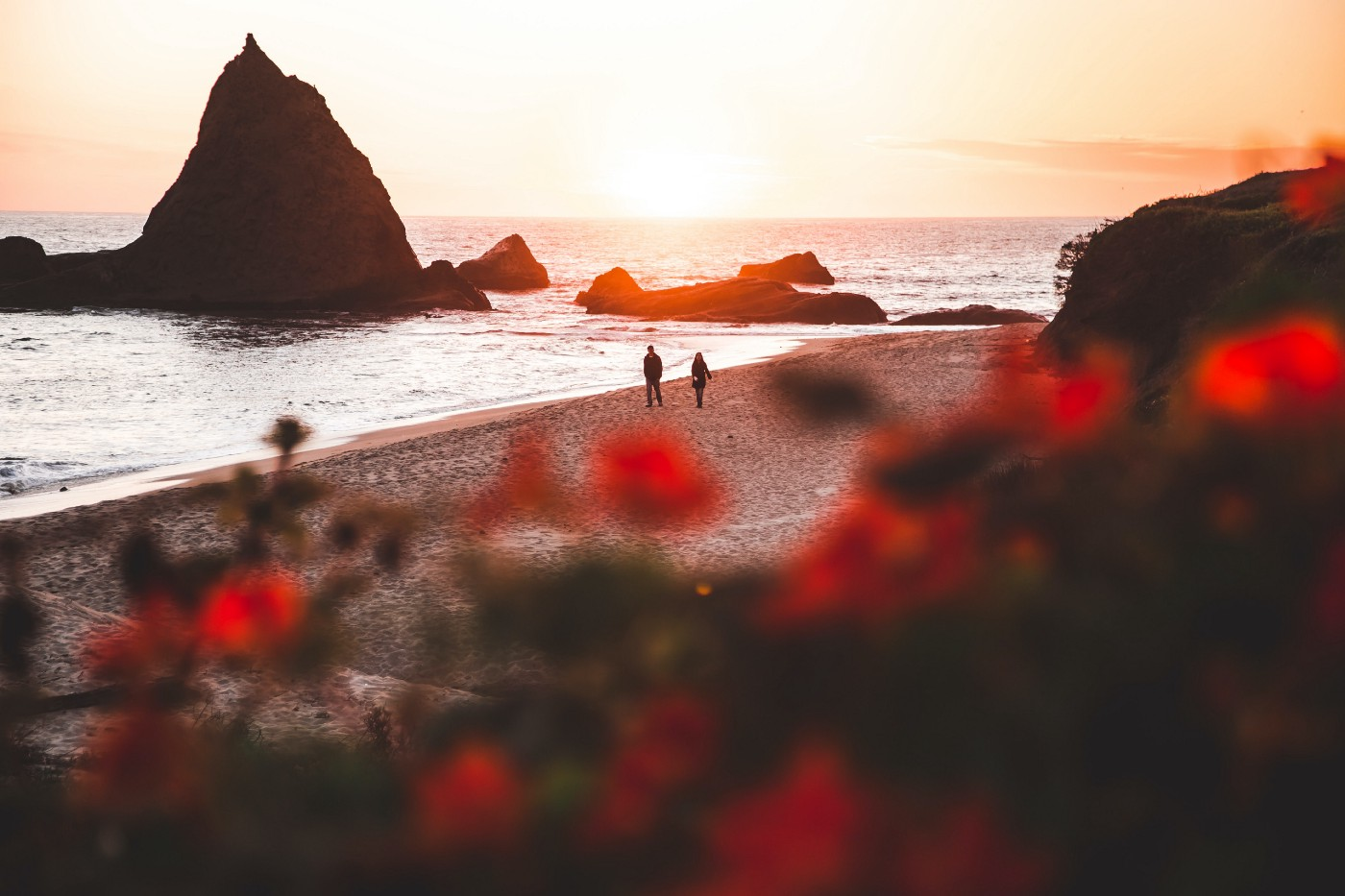 Couple walking by the sea, red wildflowers waving in the distance.