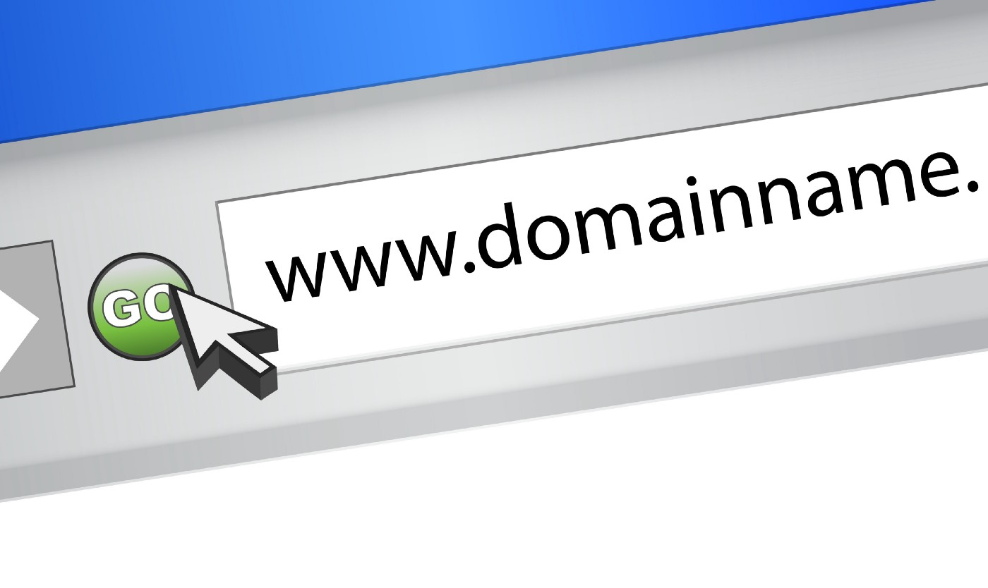 "A search browser with ""www.domainname.com"" typed in."