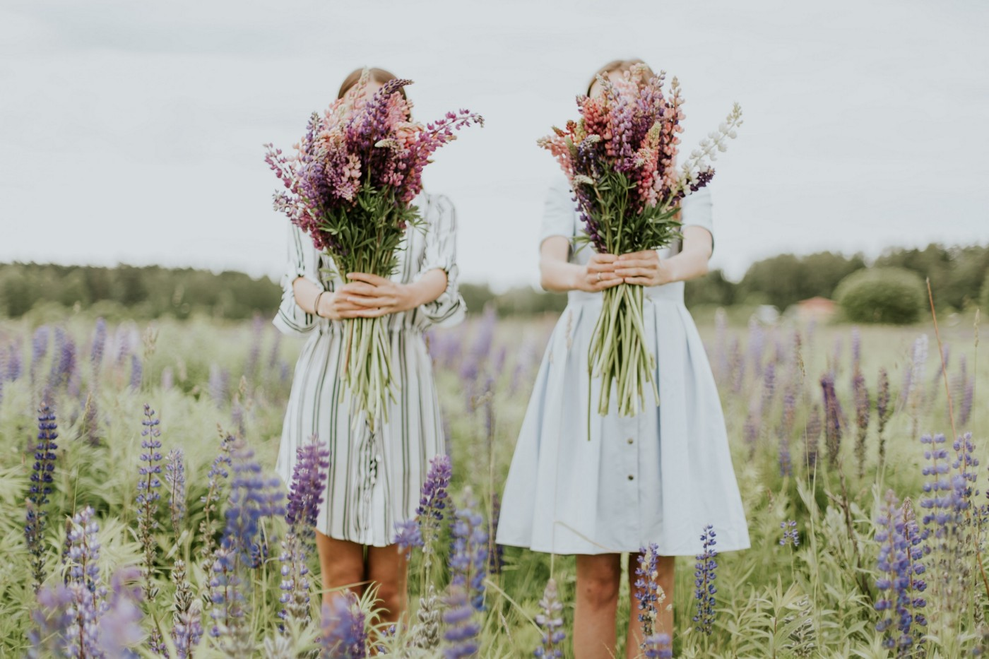 Two sisters in knee-length dresses in a lilac field holding colorful bouquets of flowers outstretched in front of themselves, hiding their faces.