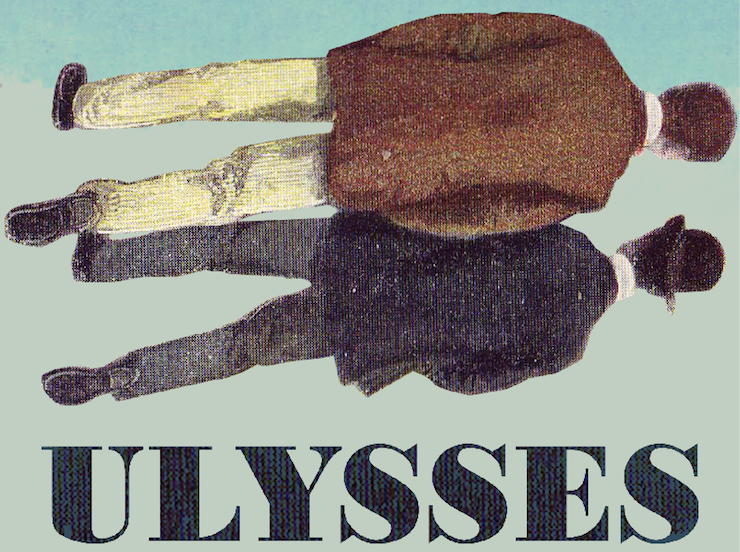 Ulysses by James Joyce is the 'best book'
