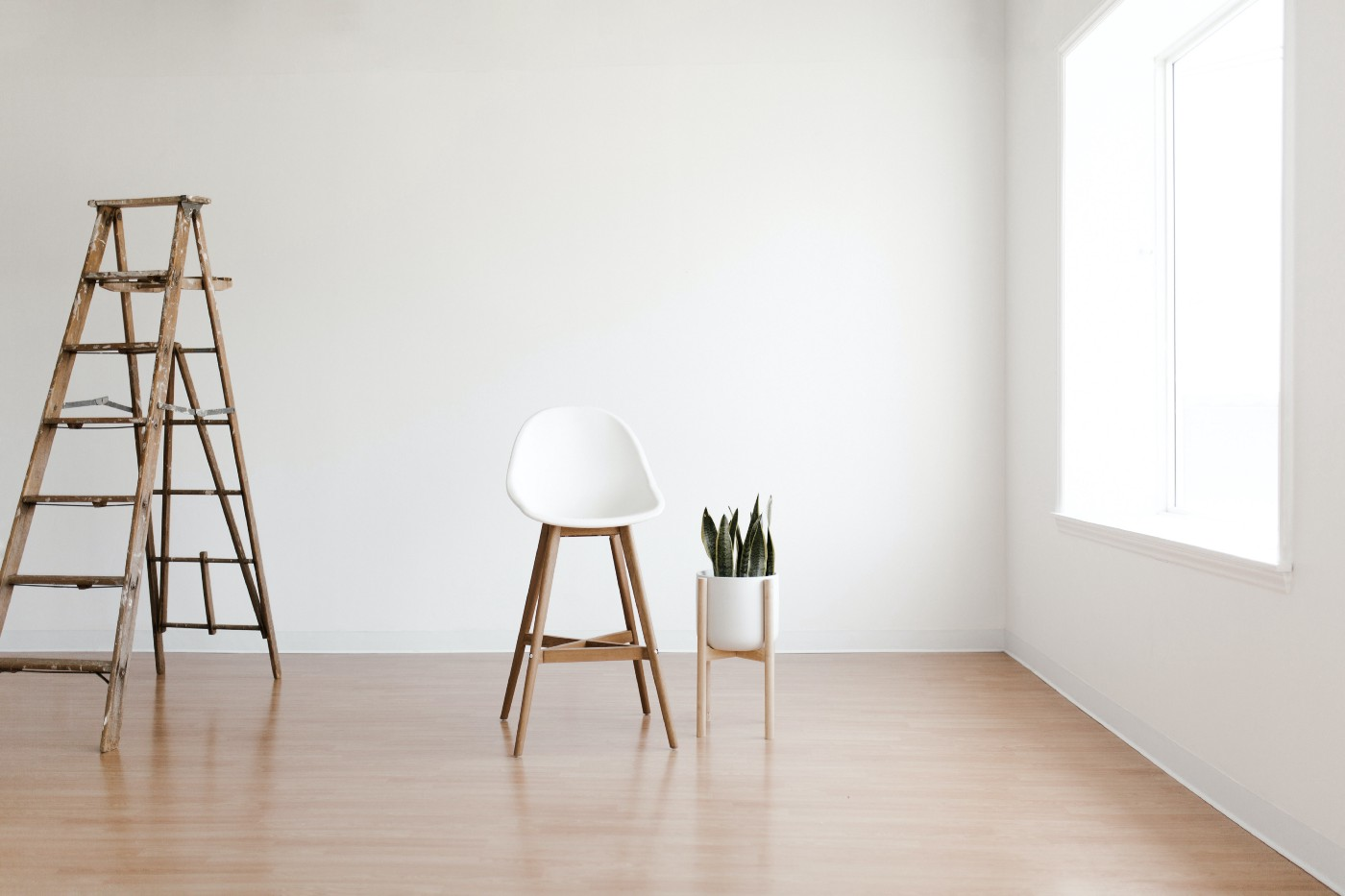 A minimal room with a chair and plant