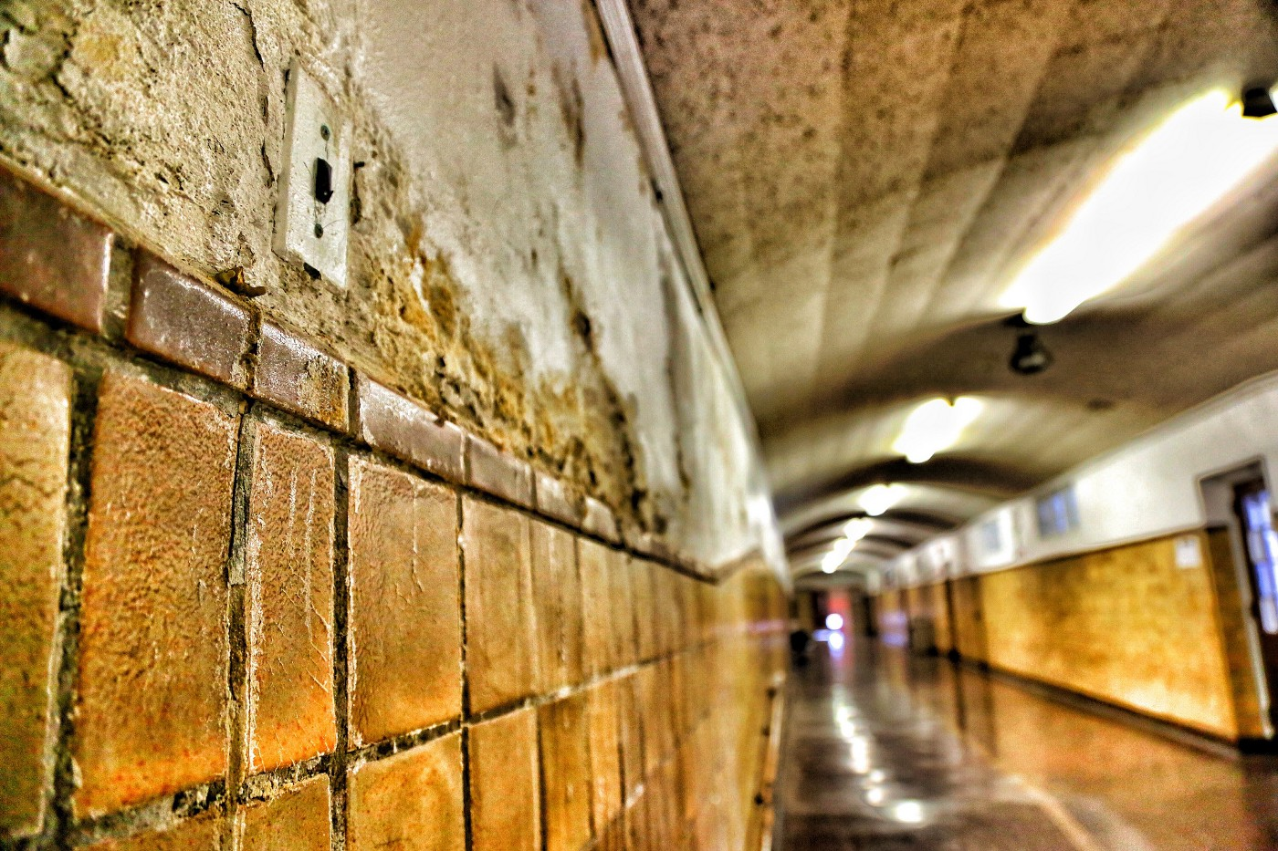 A photograph of a crumbling, dirty school hallway of a school in New Jersey.