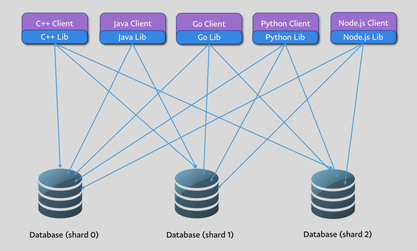 Scaling Database Access for 100s of Billions of Queries per Day